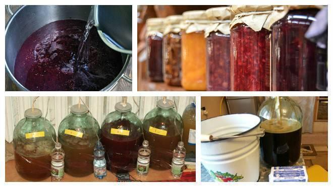 Как приготовить брагу для питья в домашних условиях