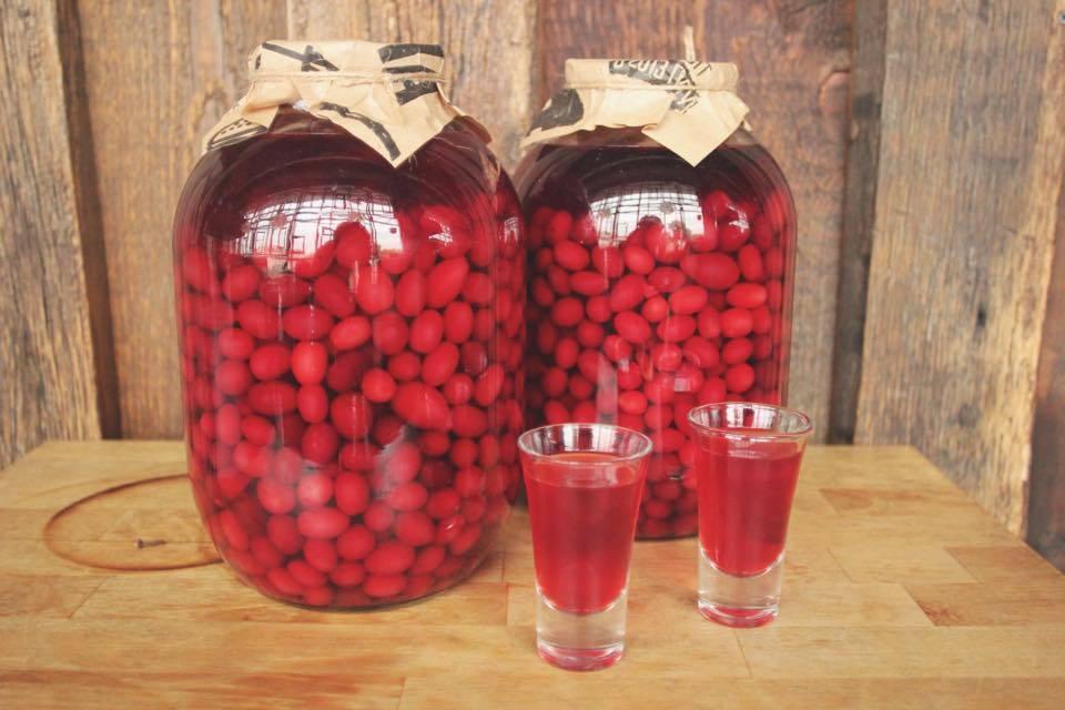 Рецепты кизиловых настоек— дьявольски вкусный напиток из «шайтановой ягоды» - застолье - медиаплатформа миртесен