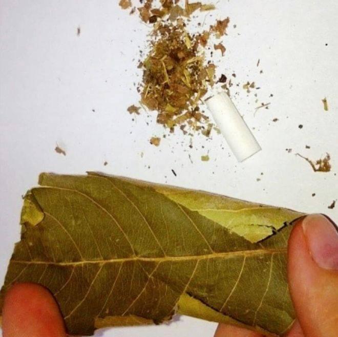 Как бросить курить народными средствами быстро и эффективно?