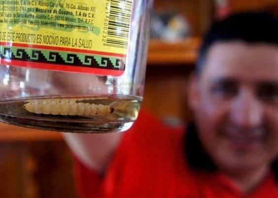 Текила с червяком в бутылке