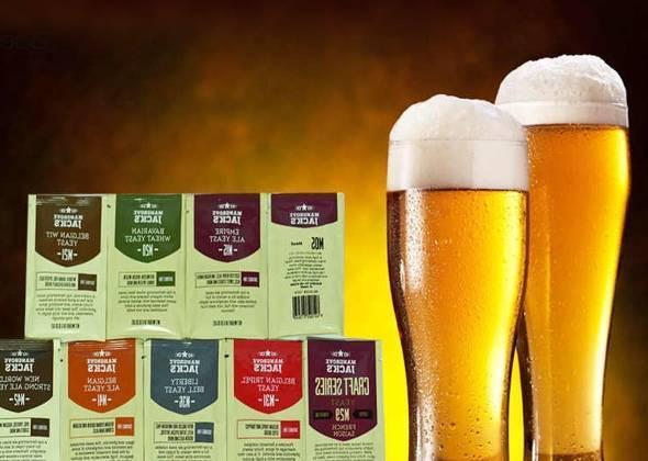 Порошковое пиво. технология производства пива. как отличить порошковое пиво от натурального? основные этапы производства пива