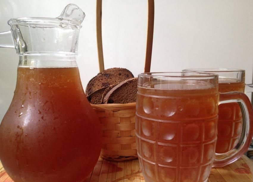 Домашний ржаной квас – кулинарный рецепт