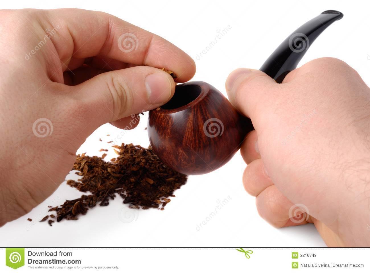 Лучшие сорта табака для трубки: какой выбрать?
