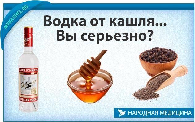 От чего помогает водка с солью?