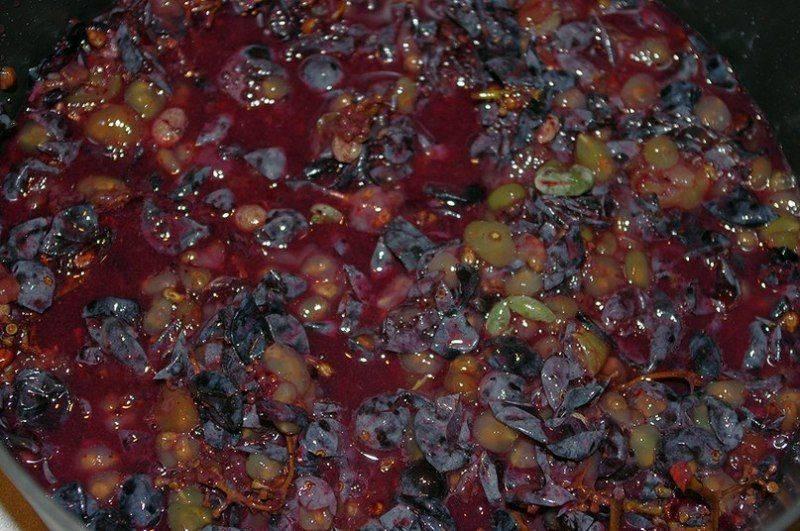 Самогон из винограда – 5 рецептов, как приготовить в домашних условиях
