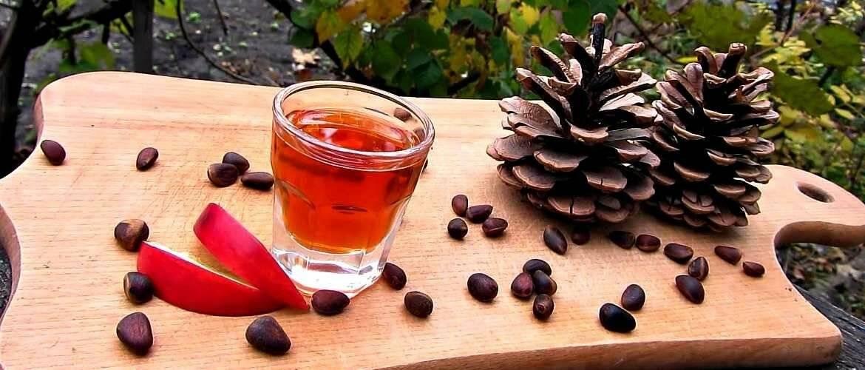 Настойка из кедровых шишек: рецепты и применение