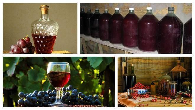 Сколько можно хранить вино открытым: условия, температура, советы сомелье : labuda.blog сколько можно хранить вино открытым: условия, температура, советы сомелье — «лабуда» информационно-развлекательный интернет журнал