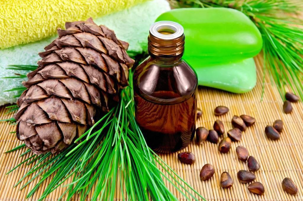 Настойки и отвары на кедровых орешках для вашего здоровья. лечебные свойства и применение скорлупы кедрового ореха
