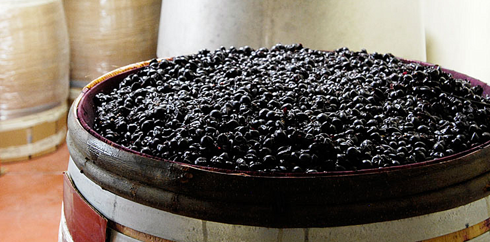 Брожение вина: температура и сроки брожения