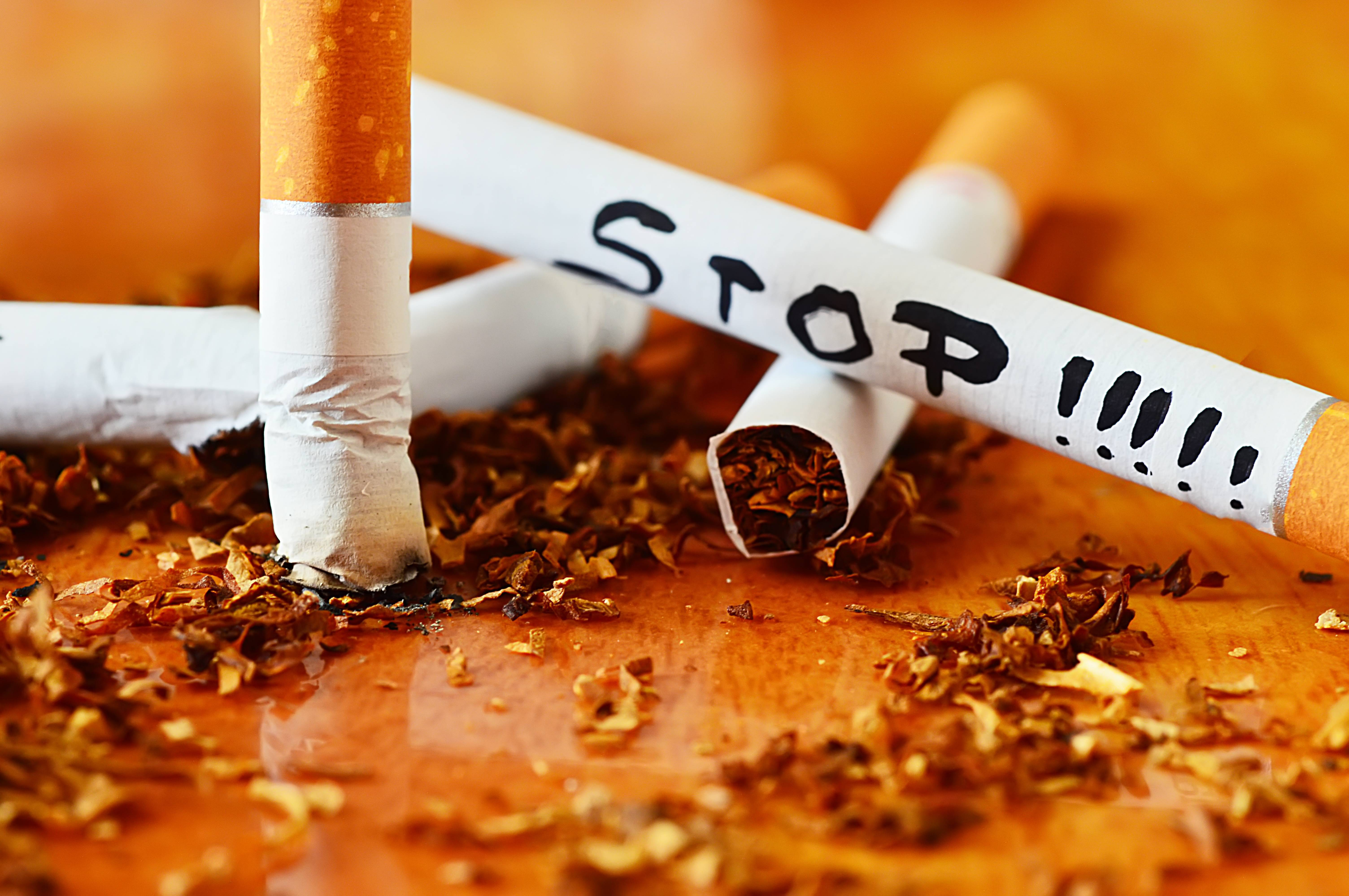 Табак - новые посты