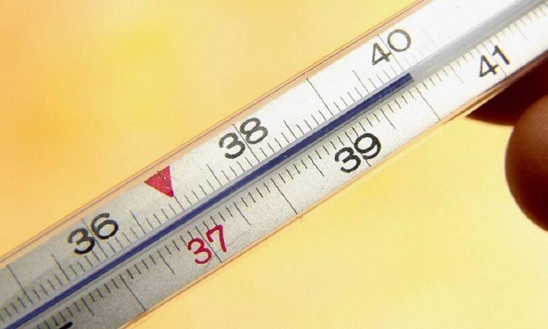 Как алкоголь влияет на температуру тела человека