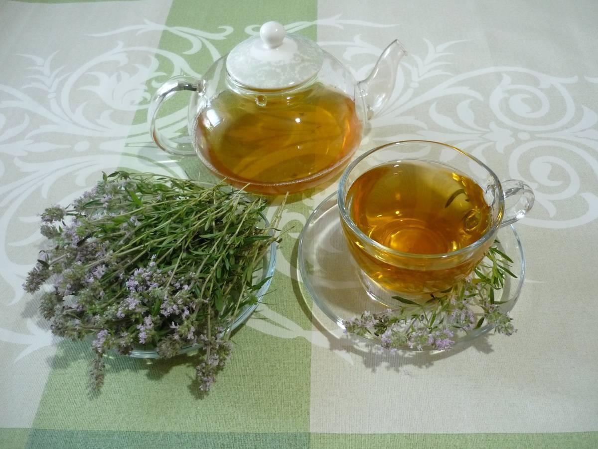 Чабрец от алкоголизма: как применять, способы приготовления с рецептами отвара и настоя, а также отзывы о лечении травой и как заваривать ее с чаем | suhoy.guru