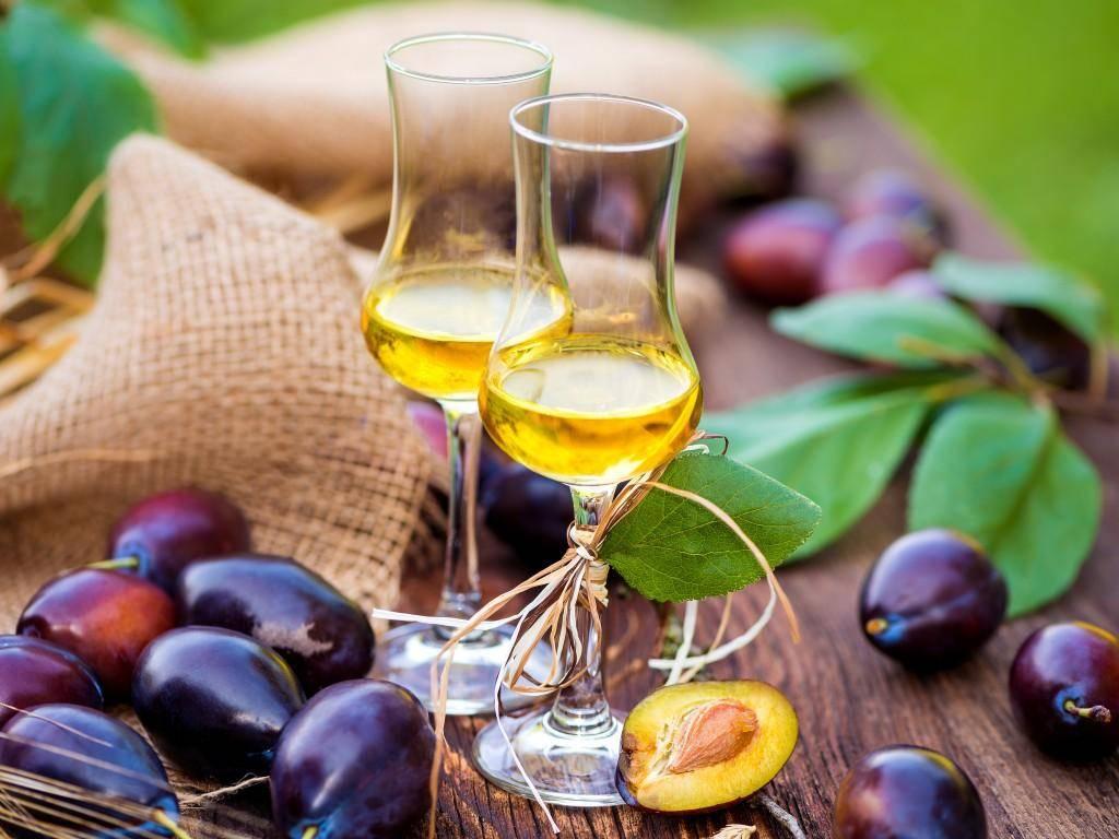 Как сделать вино из сока: технология и простые рецепты из виноградного концентрата и гранатового сырья в домашних условиях?