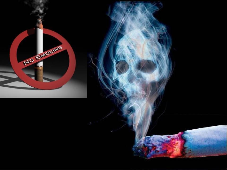 Вред курения и алкоголя для здоровья организма человека   prof-medstail.ru