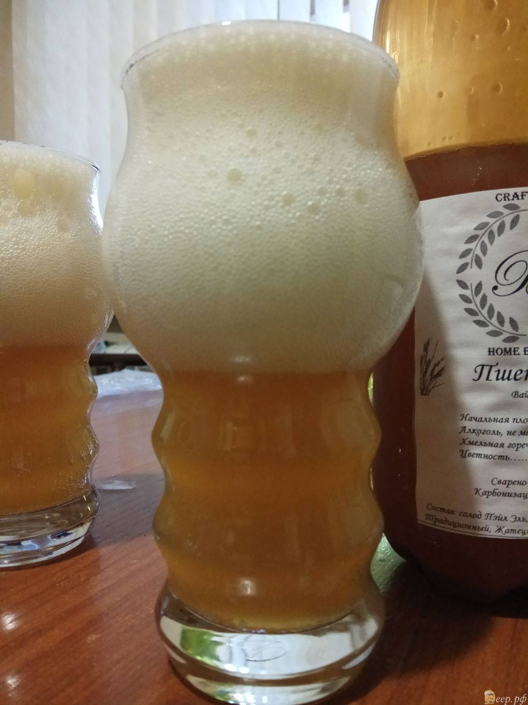 Пшеничное пиво в домашних условиях: особенности приготовления и рецепт
