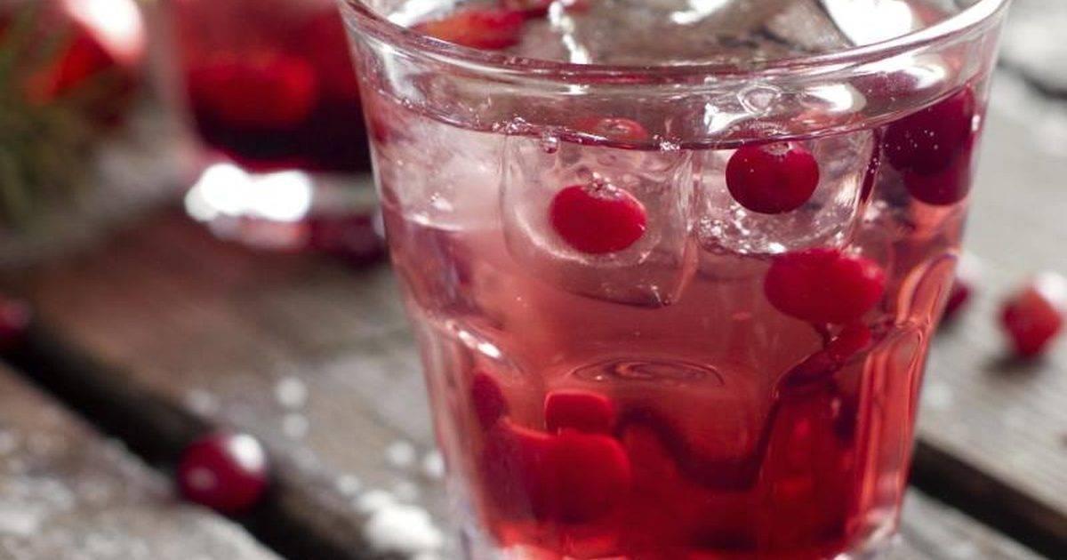 Настойка из клюквы на водке в домашних условиях: лучшие пошаговые рецепты и секреты приготовления