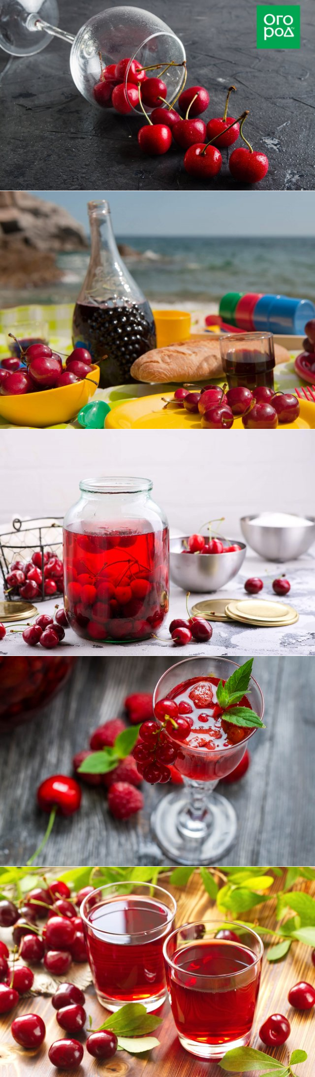 Рецепт вишневого ликера. рецепты ликеров из вишни. с привкусом лета на губах.