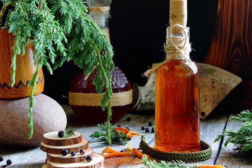 Домашняя настойка из можжевельника на самогоне — пошаговое приготовление