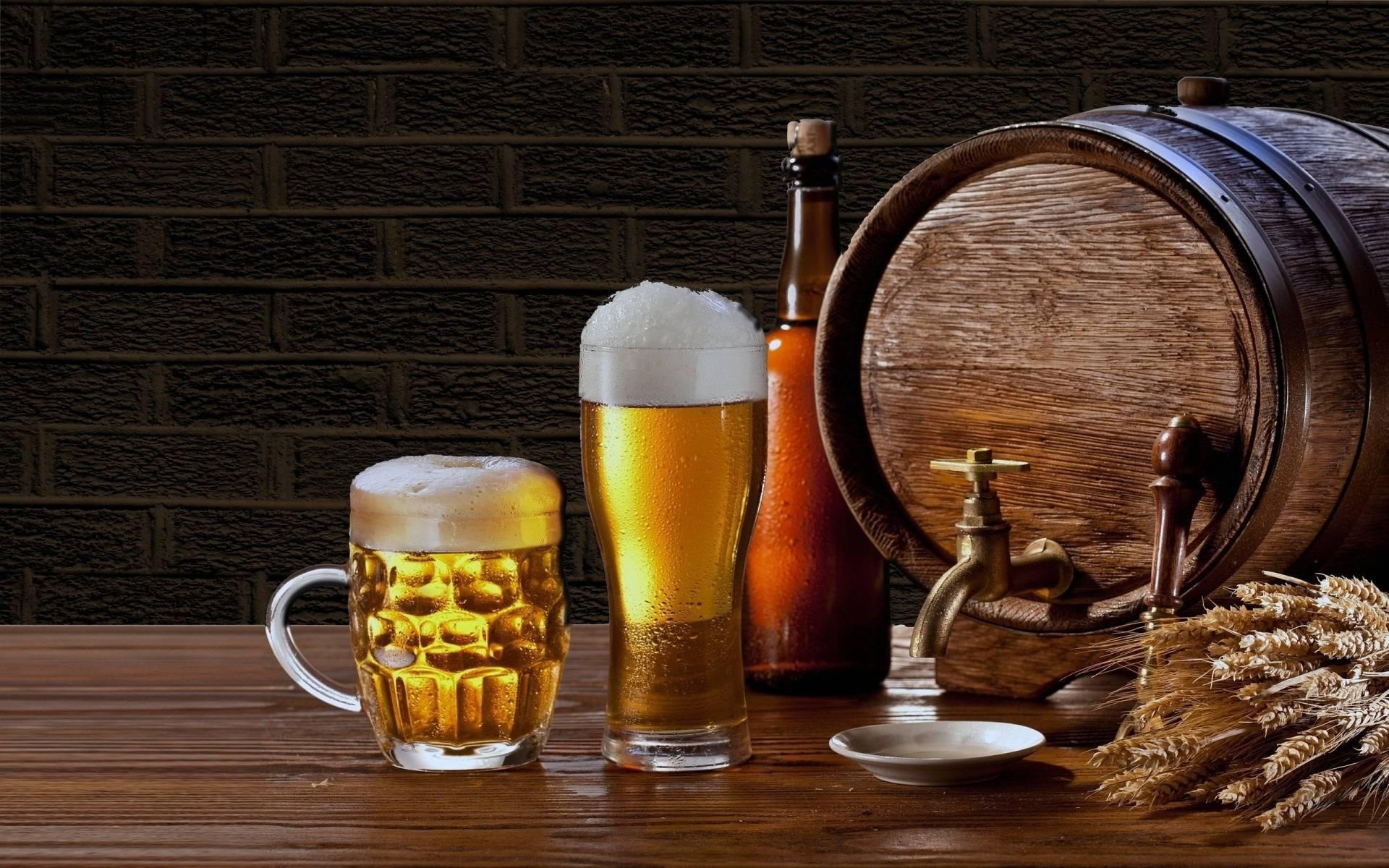 Работник пивной точки раскрывает секреты: «никогда непокупайте пиво нарозлив» – ? женские секреты
