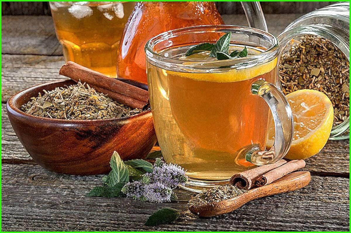 Чай от похмелья: разновидности, полезные свойства, способы приготовления