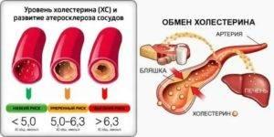 Как курение влияет на холестерин в крови? повышается ли уровень холестерина в крови от курения.