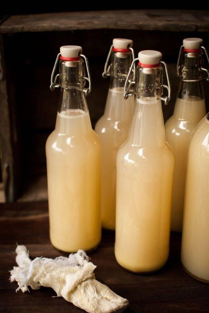Рецепт приготовления имбирного пива