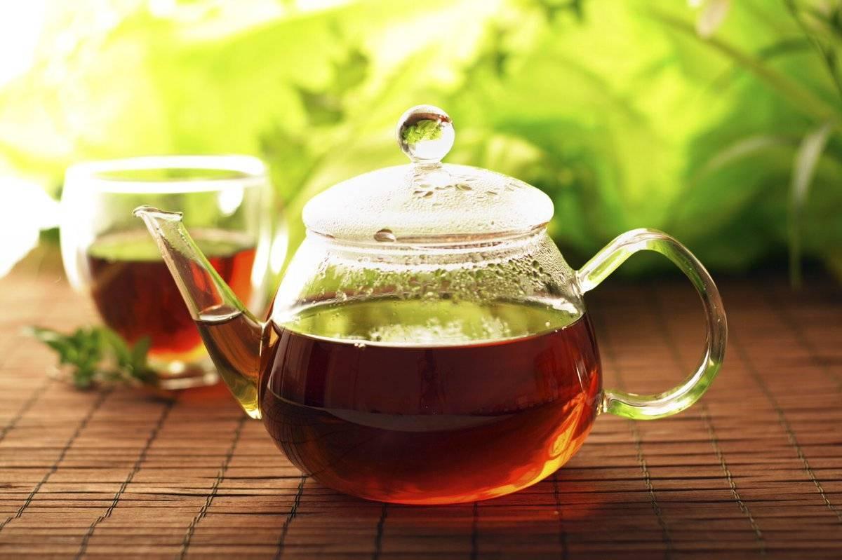 Чай с коньяком: 6 интересных рецептов, польза для здоровья, противопоказания