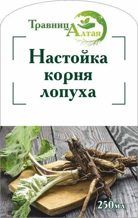 Лечение соком лопуха с медом и водкой - применение