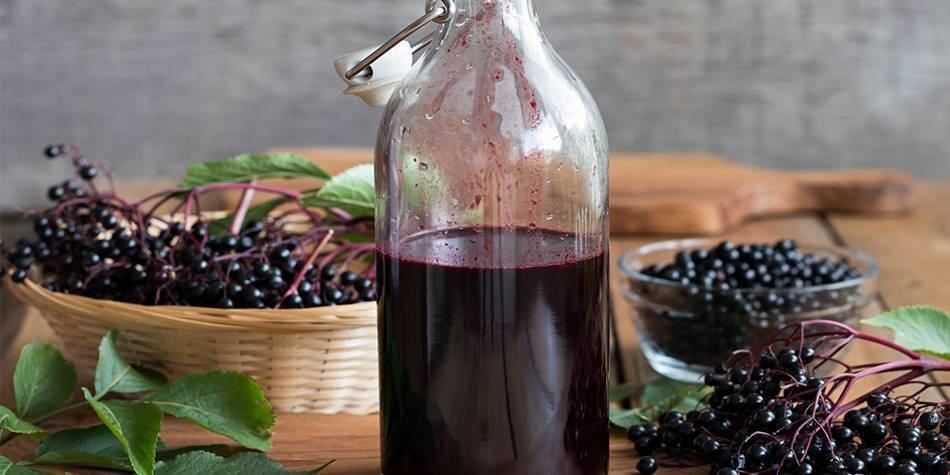 Вино из красной калины в домашних условиях: рассмотрим обстоятельно