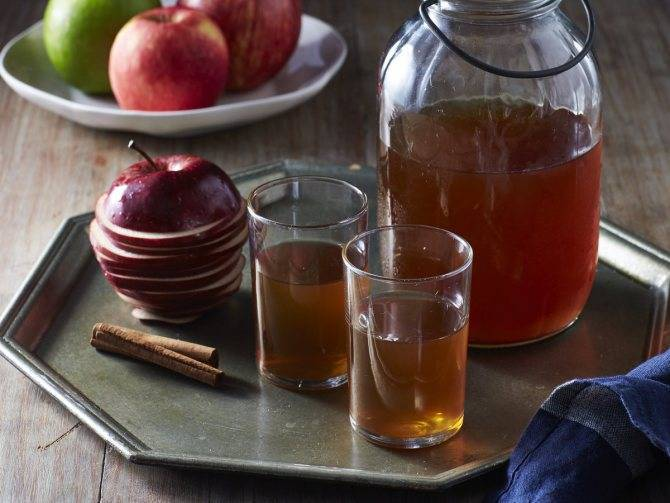 Самогон из яблок: рецепты, на чем настоять яблочный самогон