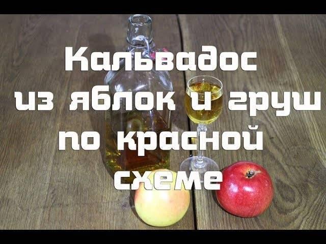 Приготовление кальвадоса из яблок в домашних условиях: правила, секреты, советы