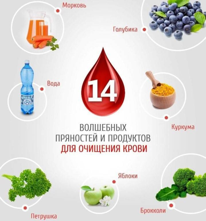 Чистка крови народными средствами в домашних условиях: эффективные травы и сборы