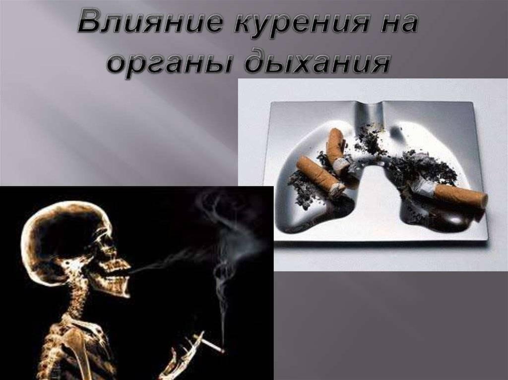 Одышка от курения: причины, почему тяжело дышать после отказа от сигарет, симптомы и лечение затрудненного дыхания у курильщика