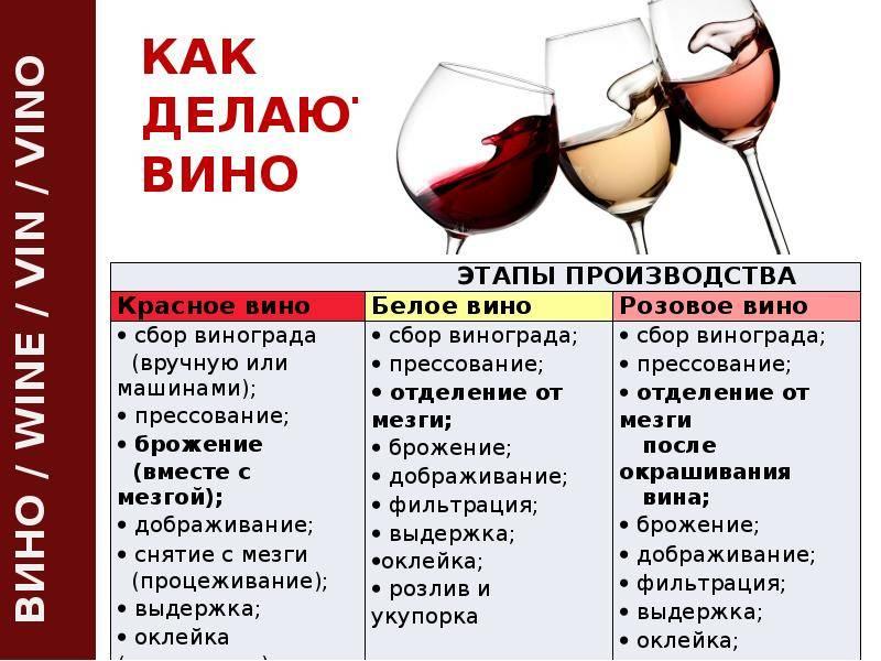 Домашнее виноделие - ? все этапы, процессы и необходимые компоненты
