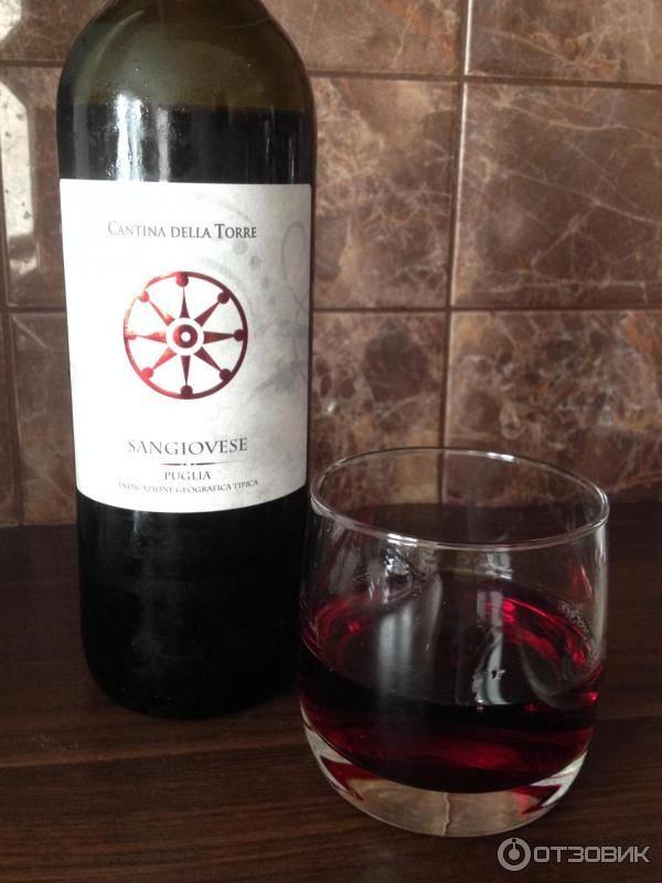 Сорт винограда санджовезе: описание и характеристика, посадка и уход, размножение