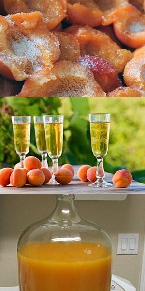 Готовим домашнее вино из абрикосов
