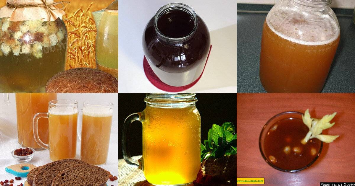 Свекольный квас: полезные свойства и противопоказания, состав, рецепты приготовления