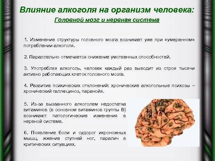 Влияние никотина на организм человека: польза и вред отравление.ру влияние никотина на организм человека: польза и вред