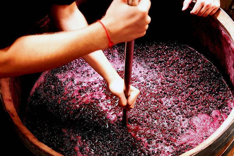 Как делать вино из винограда лидия в домашних условиях? несложные рецепты своими руками   про самогон и другие напитки ?   яндекс дзен