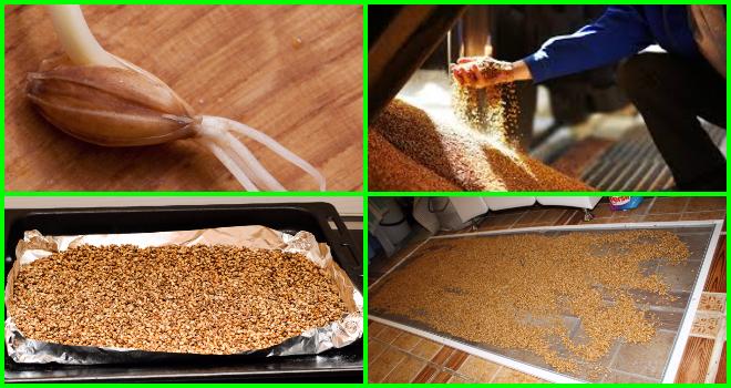 Как приготовить самогон из ячменя в домашних условиях