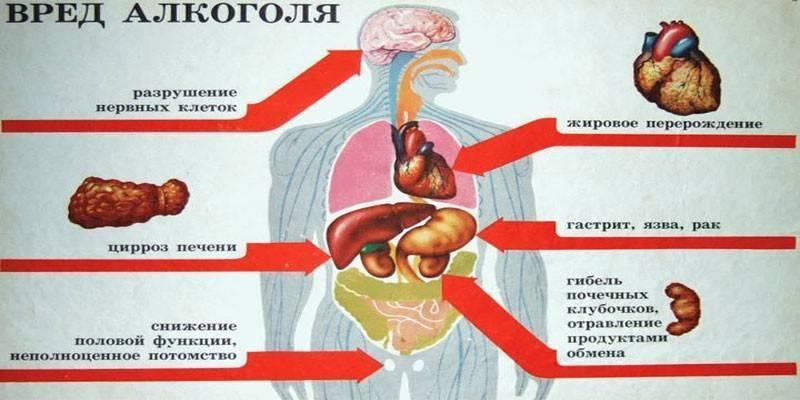 Алкоголь при остром простатите predstavit от простатита