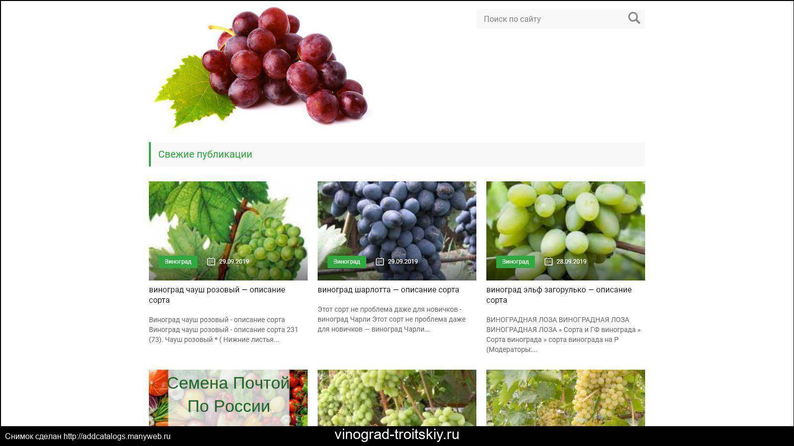 """Виноград """"изабелла"""" : посадка и уход, подробная инструкция по обрезке и размножению черенками"""