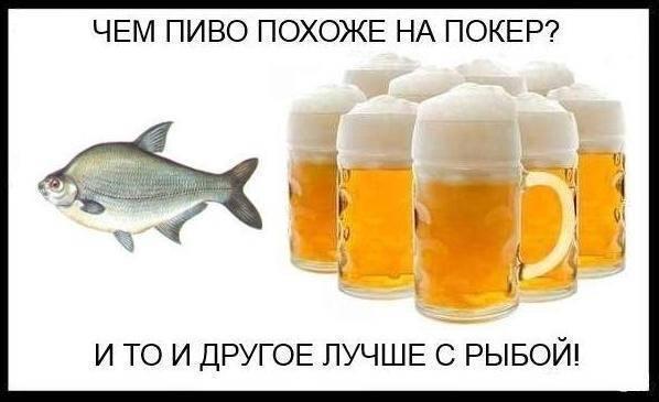 Как подобрать закуску к определенному виду пива