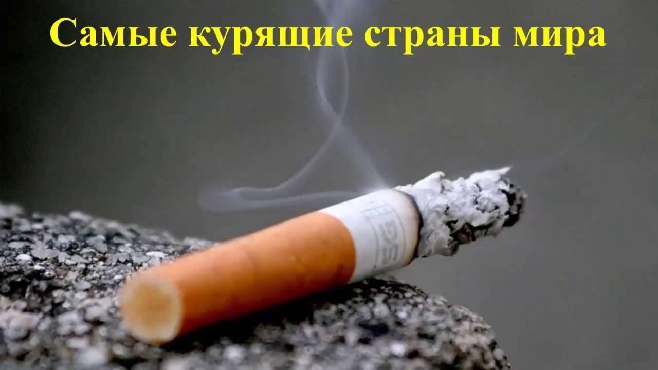 Сколько людей в мире курят - статистика