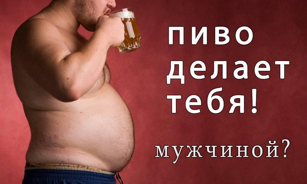 Пиво: польза и вред для мужского организма, как выбрать правильное