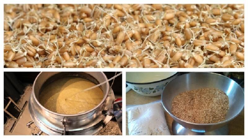 Самогон из ячменя: простой рецепт в домашних условиях, как сделать пошагово