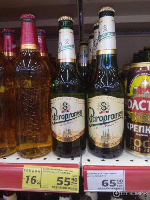 Какое пиво самое лучшее: рейтинг в таблице (топ-10), рекомендации