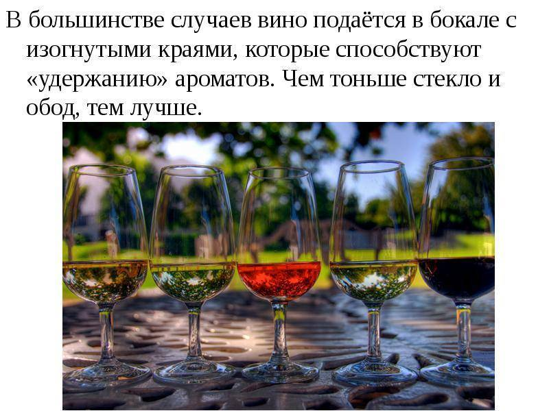Интересные факты и истории про вино: разбираемся со всех сторон