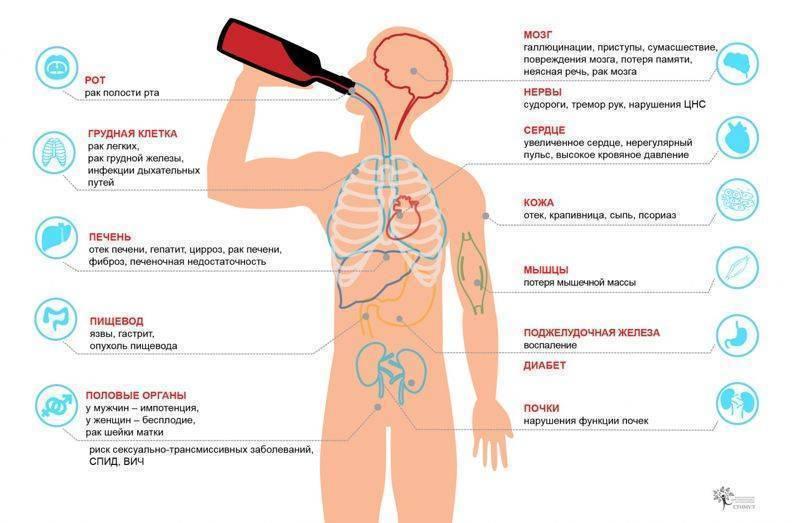 Алкогольный калькулятор онлайн. расчет степени опьянения и содержания алкоголя в крови