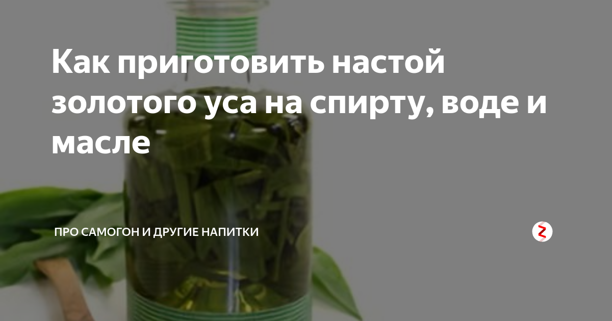 Зверобой: лечебные свойства растения и применение в народной медицине